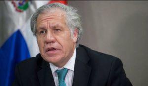 Luis Almagro. (AFP)